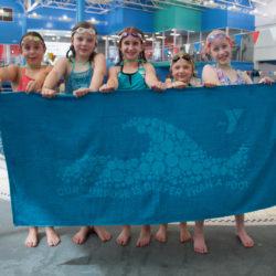 South Meridian Aquatics Towel
